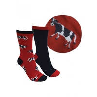 THOMAS COOK FARMYARD RED NAVY SOCKS 2PK